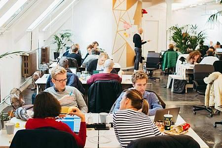 Komplexe Problemstellungen beraten, Codes überprüfen: Als Software-Entwickler sollte man viel Geduld mitbringen. Foto: Le Wagon/dpa-tmn