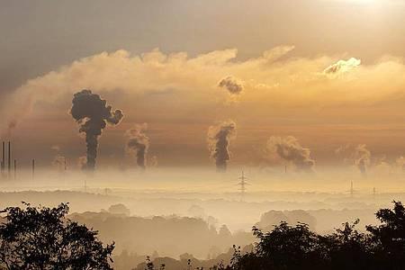 Die EU-Kommission will am 14. Juli ihr Paket «Fit für 55» mit zwölf Klimaschutzmaßnahmen vorlegen. Foto: OHB SE/obs