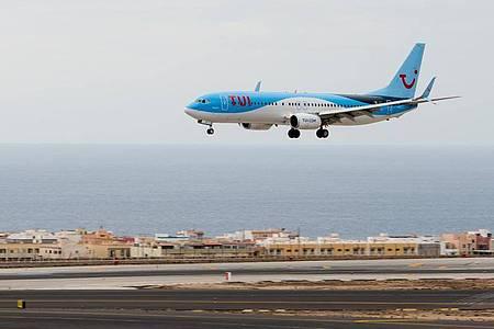 Ein Flugzeug des Konzerns Tui. Symbolfoto. Foto: ARTuro Jimenez/dpa