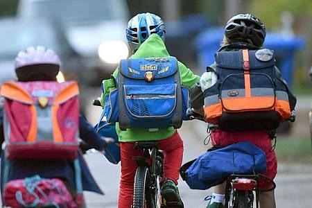 Kinder sind auf einer Straße mit dem Fahrrad unterwegs zur Schule. (Archivbild). Foto: Ralf Hirschberger/dpa-Zentralbild/dpa