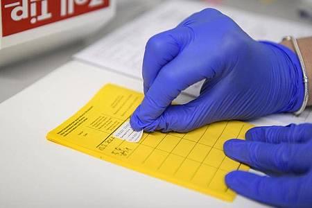 Angesichts zunehmender Corona-Lockerungen sollen strengere Regeln gegen Missbrauch von Impfpässen und Testnachweisen kommen. Foto: Christopher Neundorf/dpa