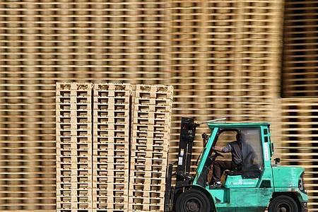 Ein Mitarbeiter fährt mit einem Gabelstapler an neuen Holzpaletten vorbei. Foto: Jens Büttner/ZB/dpa