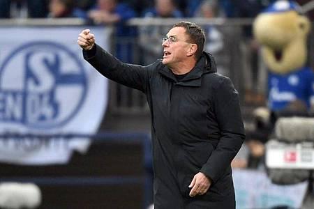Trainerkandidat beim FC Schalke 04: Ralf Rangnick. Foto: Ina Fassbender/dpa
