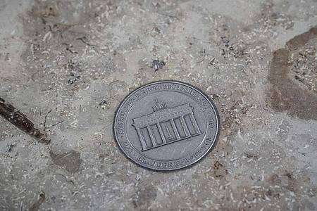 Detail aus dem ?Sternentalerhimmel von Stoebo? der niederländischen Künstlerin Cisca Bogman und des deutscher Künstlers Oliver Störmer im Boden des Flughafens. Foto: Michael Kappeler/dpa