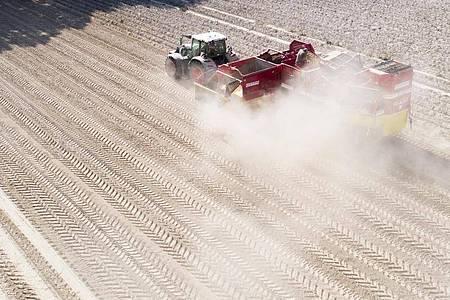Ein Landwirt erntet Kartoffeln auf einem staubtrockenen Feld in der Region Hannover (2020). Foto: Julian Stratenschulte/dpa