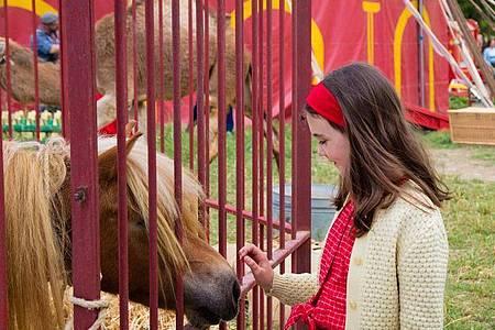 Elisa de Lambert als zehnjährige Cécile in einer Szene des Films «Mein Freund Poly». Foto: Eric Travers/capelight pictures OHG/dpa