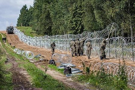 Polnische Soldaten errichten Anfang September einen Stacheldrahtzaun entlang der polnisch-belarussischen Grenze. In dem Grenzgebiet sind die Leichen von drei Menschen gefunden worden. Foto: Attila Husejnow/SOPA Images via ZUMA Press Wire/dpa