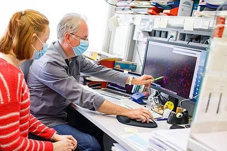 Die Forschungsergebnisse müssen auch digital verarbeitet werden:Die angehende Biologielaborantin Kathrin Ganter und ihr Ausbilder Herbert Holz besprechen eine Darstellung am Monitor. Foto: Philipp Von Ditfurth/dpa-tmn