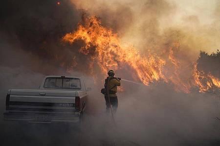 Ein Feuerwehrmann versucht, gegen die Flammen anzukämpfen. Foto: Jae C. Hong/AP/dpa