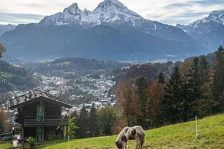 Weide über Berchtesgaden und vor dem Watzmann. Foto: Lino Mirgeler/dpa