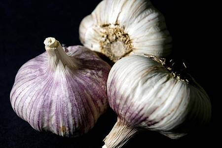 Nicht nur stark im Geschmack: Knoblauch wird eine gesundheitsfördernde Wirkung nachgesagt. Foto: Franziska Gabbert/dpa-tmn