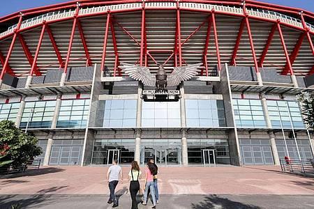 Das Final-Turnier der Champions League findet in Lissabon statt. Foto: Jan Woitas/dpa-Zentralbild/dpa