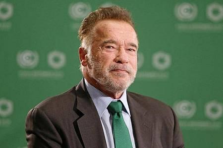 Arnold Schwarzenegger tut Gutes. Foto: Andrzej Grygiel/PAP/dpa