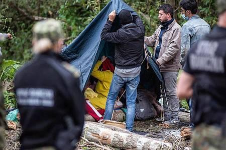 Afghanische Flüchtlinge bauen Zelte auf in einem behelfsmäßigen Lager an der Grenze zwischen Polen und Belarus. Foto: Attila Husejnow/SOPA Images via ZUMA Press Wire/dpa