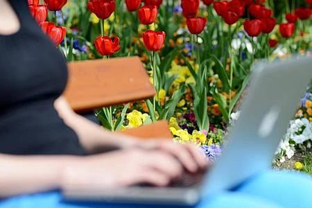 Eine junge Frau sitzt mit ihrem Notebook auf einer Parkbank. Mädchen und junge Frauen erleben laut einer Umfrage online mehr Belästigung als auf der Straße. Foto: picture alliance / dpa