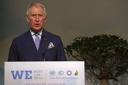 Der britische Prinz Charles bei einer Rede auf der UN-Klimakonferenz COP21 in Le Bourget 2015. Foto: Christophe Ena/AP/dpa