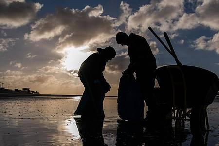 Zwei Jahre nach der Havarie des Riesenfrachters in der stürmischen Nordsee drängen Kommunalpolitiker und Naturschützer weiter darauf, Konsequenzen aus dem Unglück zu ziehen. Foto: Mohssen Assanimoghaddam/dpa
