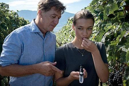 Der Südtiroler Winzer Matteo DeCanin (Tobias Moretti) prüft in seinem Weinberg mit seiner Tochter Laura (Antonia Moretti) den Reifegrad der Weintrauben. Foto: Martin Rattini/good friends Filmproduktions GmbH/ZDF/dpa