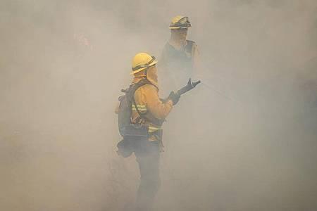Feuerwehrleute bei den Löschversuchen eines Feuers im US-Bundesstaat Kalifornien. Foto: Jae C. Hong/AP/dpa
