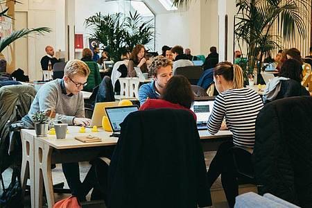 Nichts für Eigenbrötler: Entwickler arbeiten in der Regel in Teams zusammen. Foto: Le Wagon/dpa-tmn