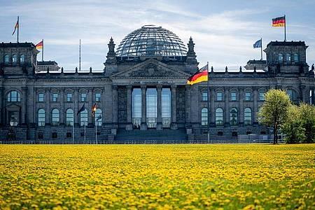 Das Reichstagsgebäude in Berlin am Morgen. Foto: Kay Nietfeld/dpa