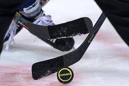 Die Deutsche Eishockey Liga (DEL) hat den für den 13. November avisierten Saisonstart erneut verschoben. Foto: Bernd Thissen/dpa
