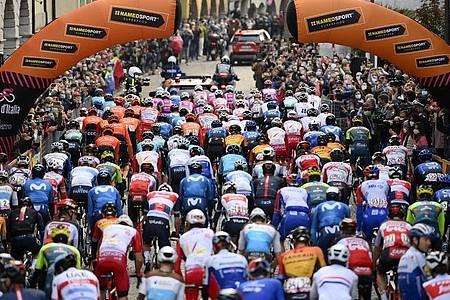 Das Fahrerfeld zum Start der 16. Etappe in Udine. Foto: Marco Alpozzi/LaPresse via ZUMA Press/dpa