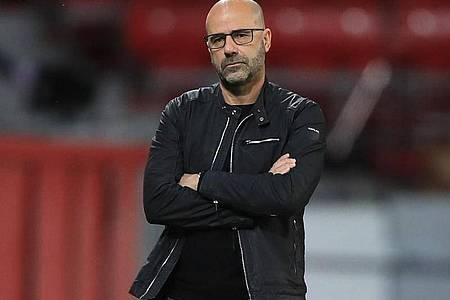 Hatte allen Grund zur Freude, reagierte aber auf eine Frage gereizt: Leverkusen-Trainer Peter Bosz. Foto: Wolfgang Rattay/Reuters-Pool/dpa