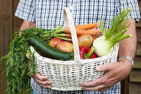 Sich Obst und Gemüse im Abo liefern zu lassen, ist eine bequeme Sache. Und man hat das Gefühl, die regionale Landwirtschaft zu stärken. Foto: Silvia Marks/dpa-tmn