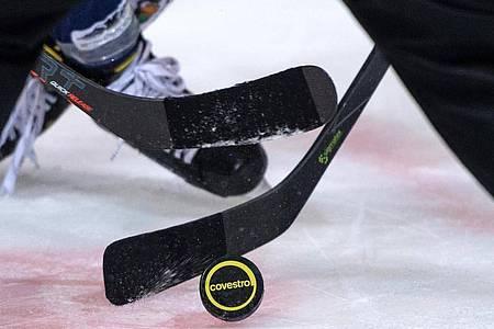 Die Eishockey-Clubs in der DEL hatten ihre Saison abgebrochen. Foto: Bernd Thissen/dpa