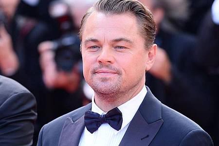 Leonardo Di Caprio -setzt sich schon seit Jahren für den Klimaschutz ein. Foto: Enpal GmbH/Enpal GmbH/obs