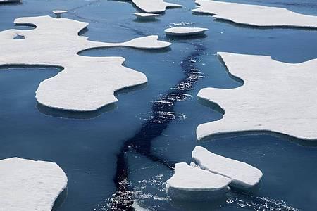 Klimawandel, Übernutzung und Umweltverschmutzung stellen eine nie dagewesene Belastung für die Meere weltweit dar. Foto: David Goldman/AP/dpa