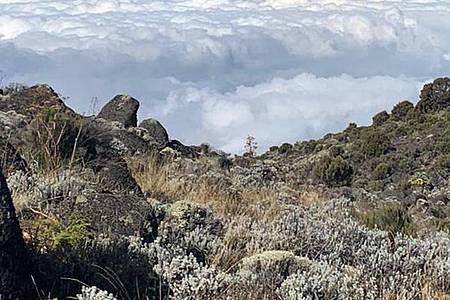 Ein Blick vom 3900 Meter hoch gelegenen Camp auf die unterhalb gelegenen Qualmwolken. Foto: Debbie Bachmann/-/dpa