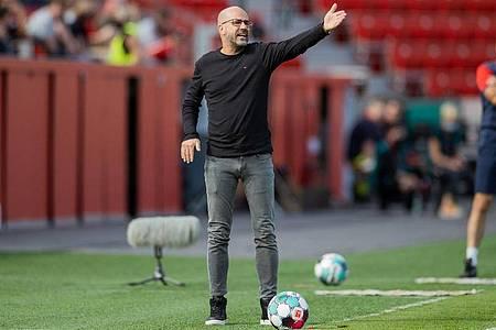 Muss versuchen die Abgänge zu kompensieren:Leverkusens Trainer Peter Bosz. Foto: Rolf Vennenbernd/dpa