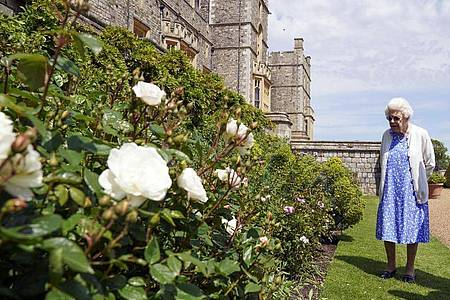 Die Queen erfreut sich an den Rosen auf Schloss Windsor. Foto: Steve Parsons/PA Media/dpa