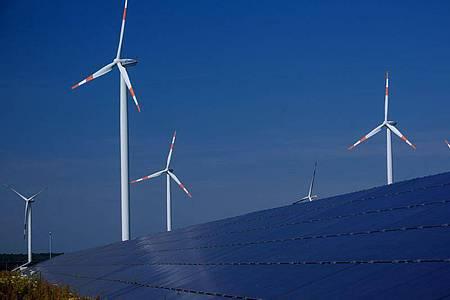 Damit Deutschland bis 2050 klimaneutral ist, braucht es laut einer Studie deutlich mehr Ökostrom. Foto: Jens Büttner/dpa-Zentralbild/dpa