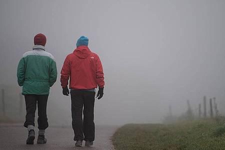 Spaziergang im Nebel. Foto: Sebastian Gollnow/dpa
