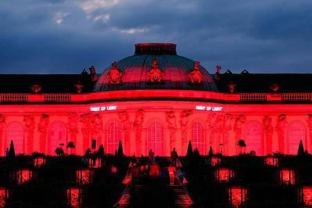 Das Schloss Sanssouci in Potsdam. Foto: Soeren Stache/dpa-Zentralbild/dpa