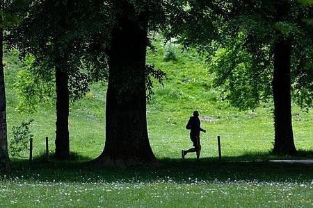 Ein Jogger im Englischen Garten in Bewegung liegt in der Natur des Menschen - von Anfang an. Foto: Sven Hoppe/dpa