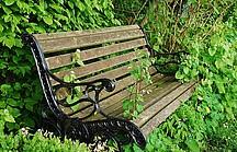 Gartenbank im Grünen