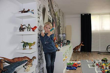 Dino-Sammler Mats