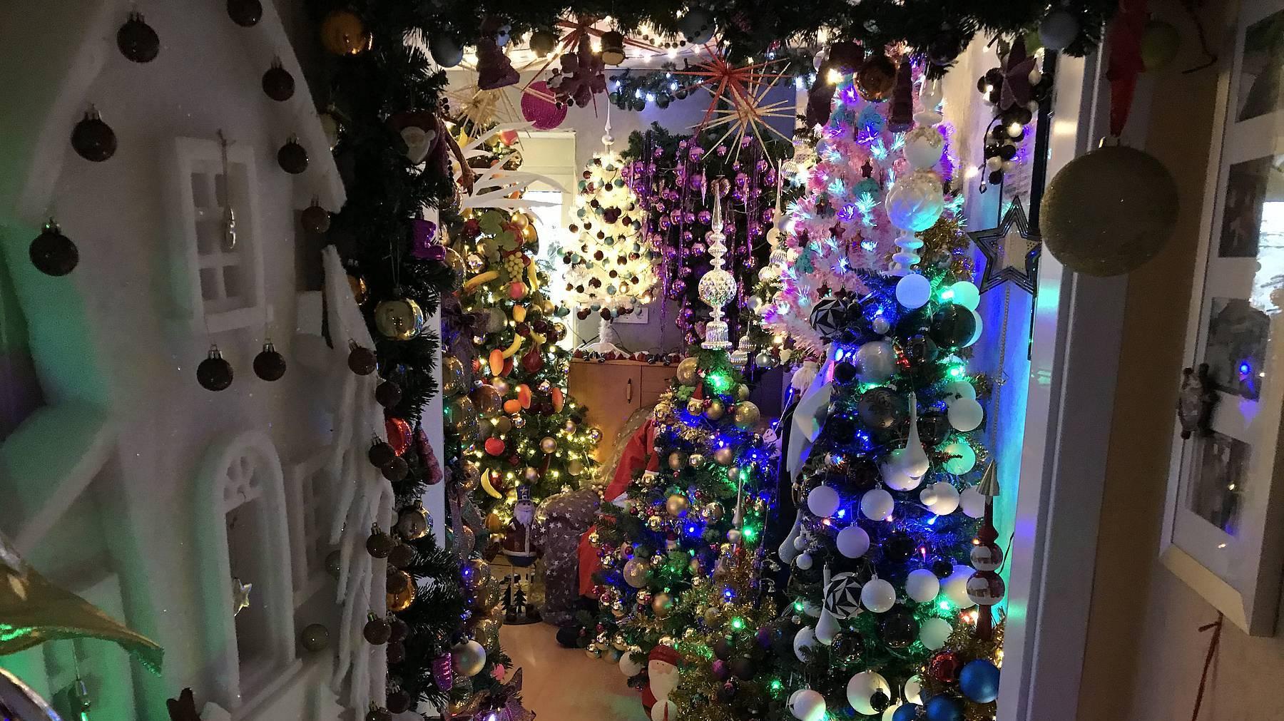 weihnachtsbaumsammler