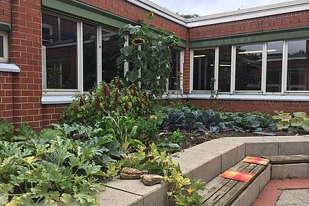 Außenbereich der Gustav Heinemann Schule
