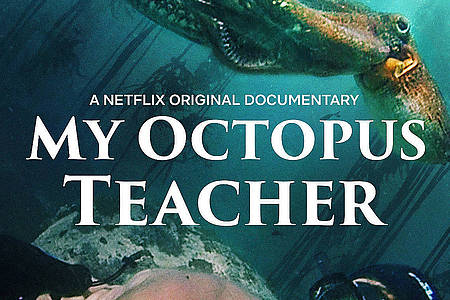 Filmplakat My Octopus Teacher