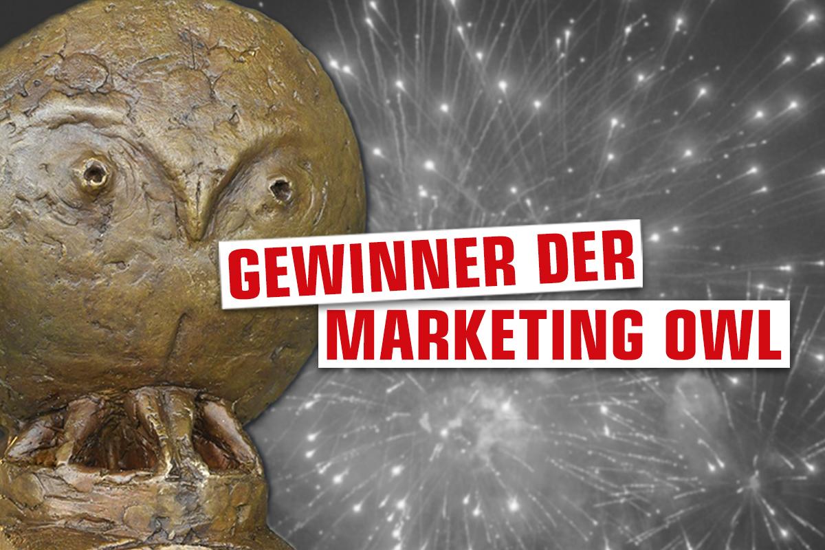 Slider-Seite-Marketing-owl